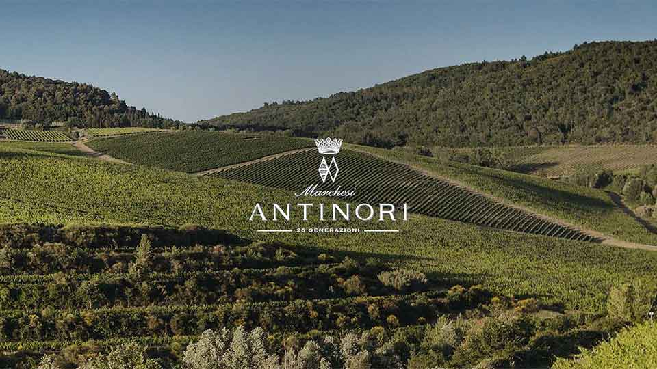 Antinori Wine Dinner